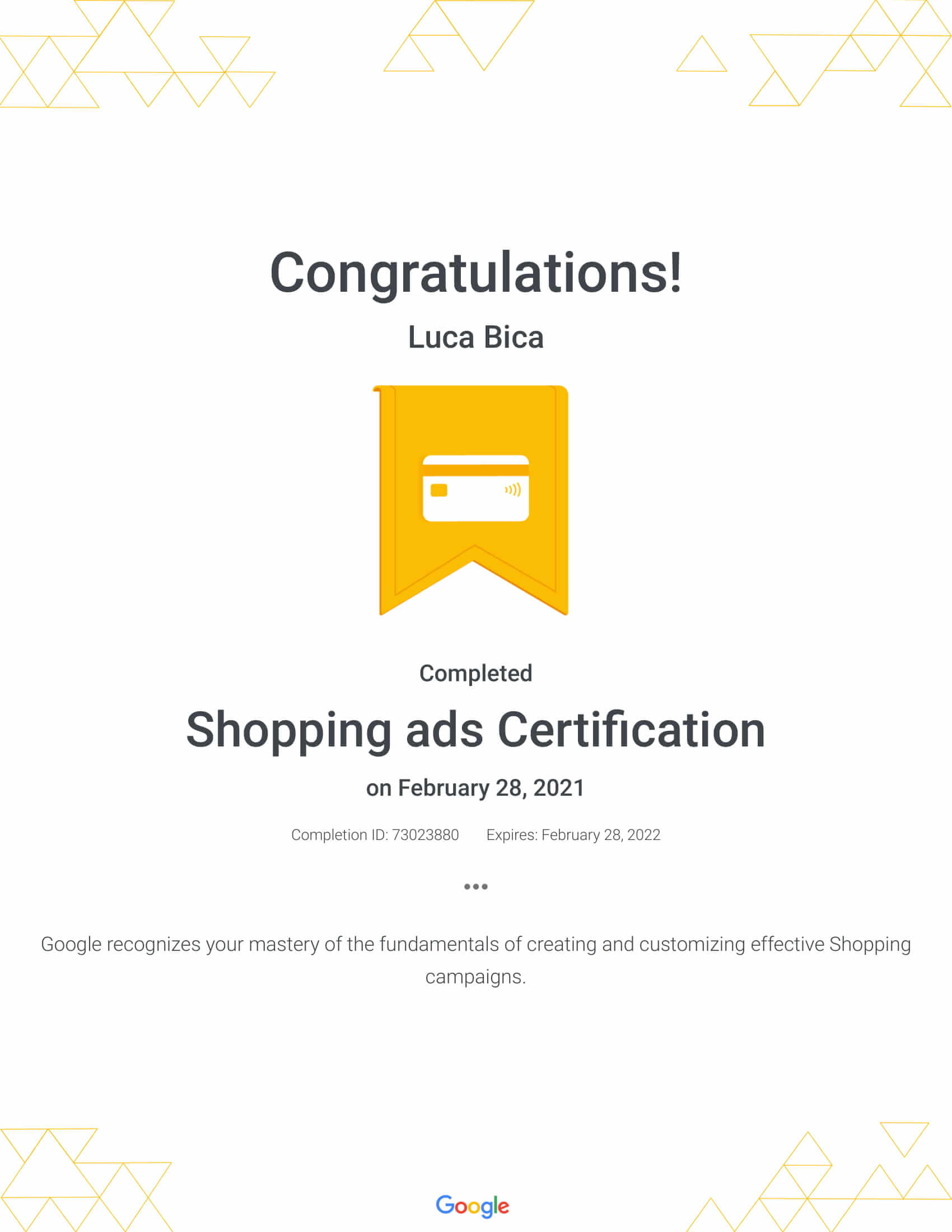 Google Shopping ads Certification Luca Bica - WebHipsters