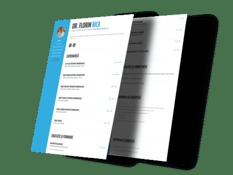 portofoliu web design si marketing online webhipsters