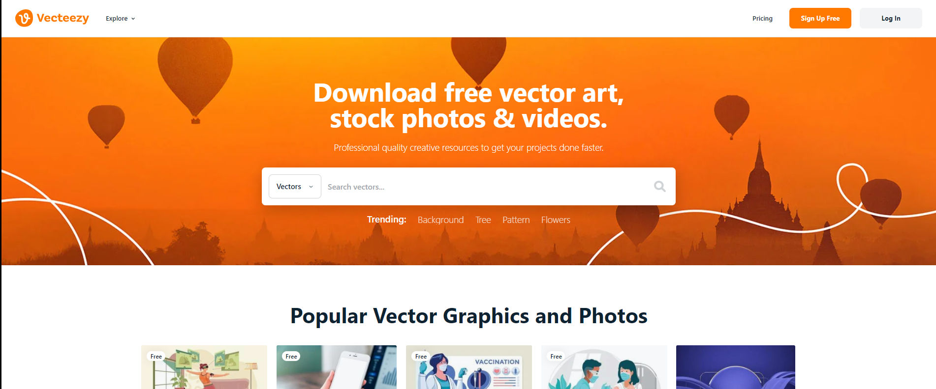 Vecteezy poza cover site fotografii